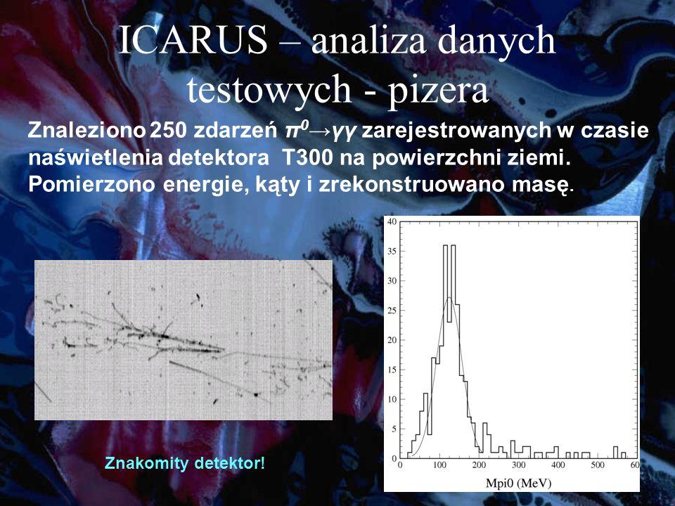 ICARUS – analiza danych testowych - pizera