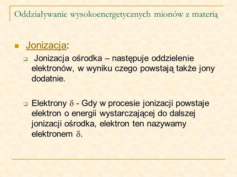 Oddziaływanie wysokoenergetycznych mionów z materią