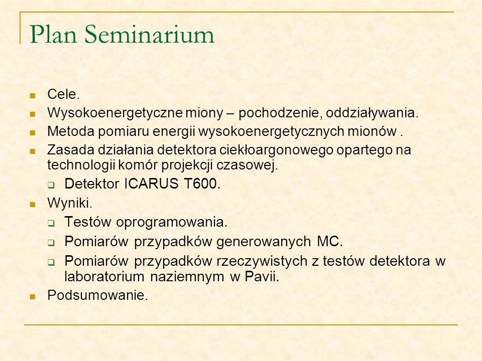 Plan Seminarium Detektor ICARUS T600. Testów oprogramowania.