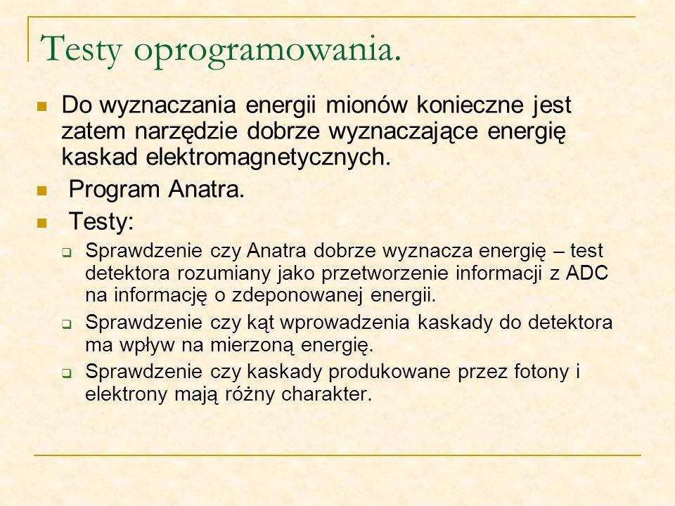 Testy oprogramowania. Do wyznaczania energii mionów konieczne jest zatem narzędzie dobrze wyznaczające energię kaskad elektromagnetycznych.