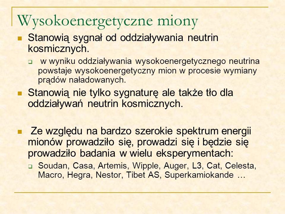 Wysokoenergetyczne miony