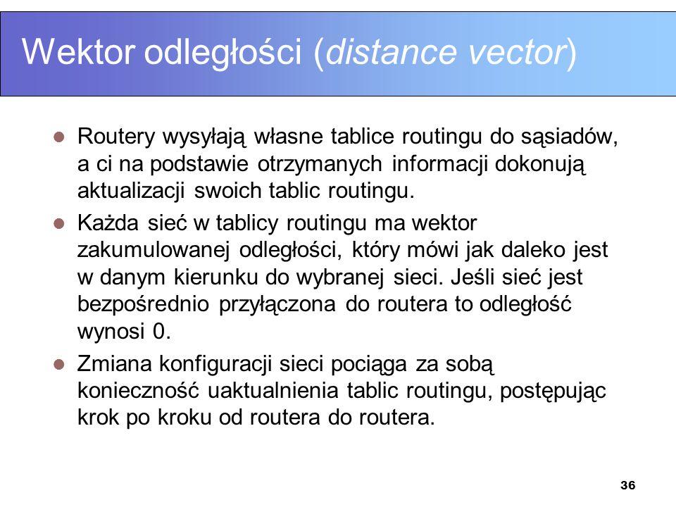 Wektor odległości (distance vector)
