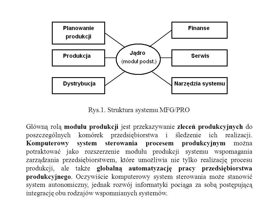 Rys.1. Struktura systemu MFG/PRO