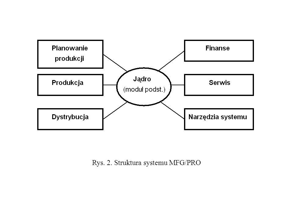 Rys. 2. Struktura systemu MFG/PRO