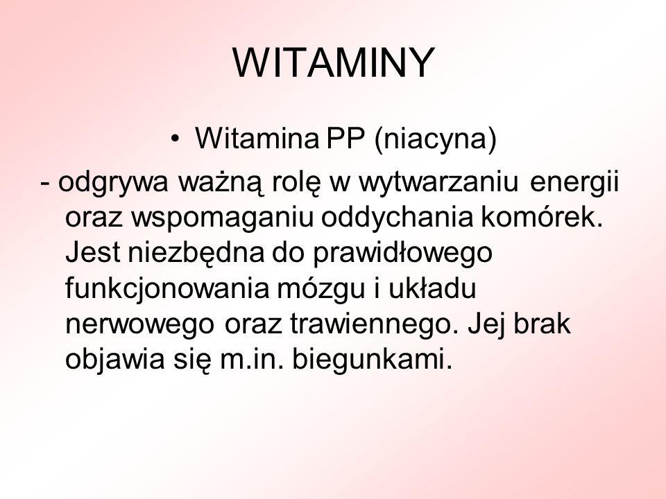 WITAMINY Witamina PP (niacyna)
