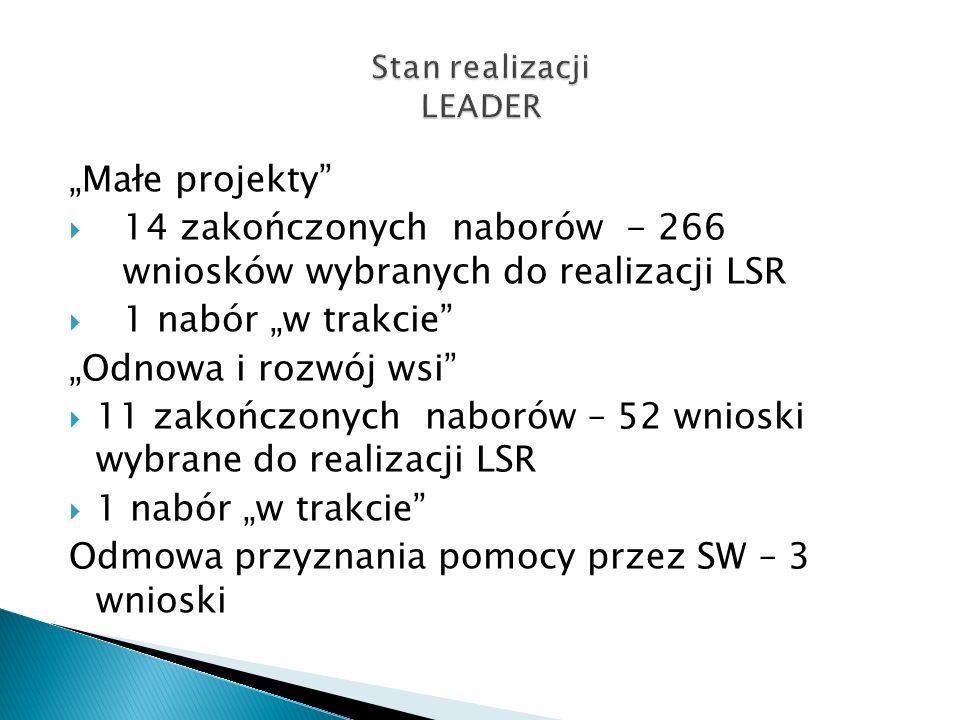 Stan realizacji LEADER