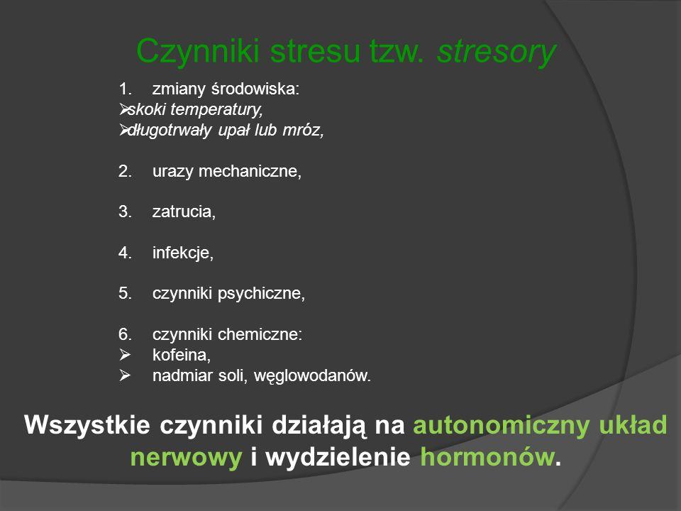 Czynniki stresu tzw. stresory