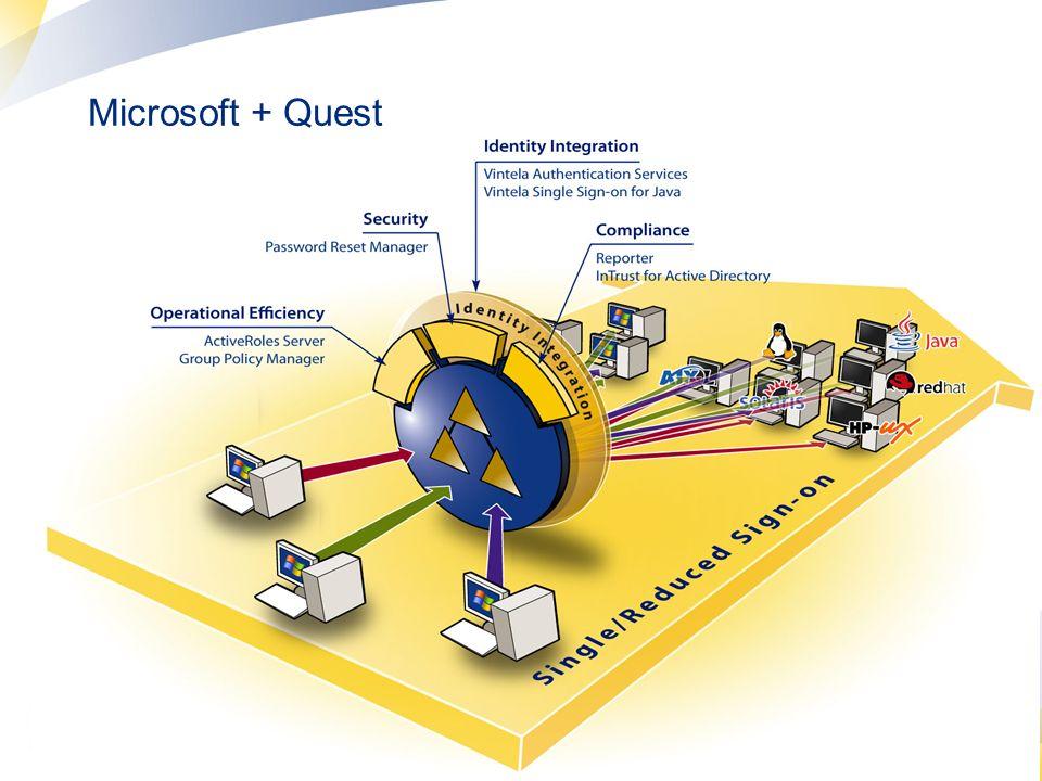 Microsoft + Quest