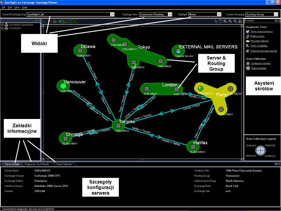 Zakładki informacyjne Szczegóły konfiguracji serwera