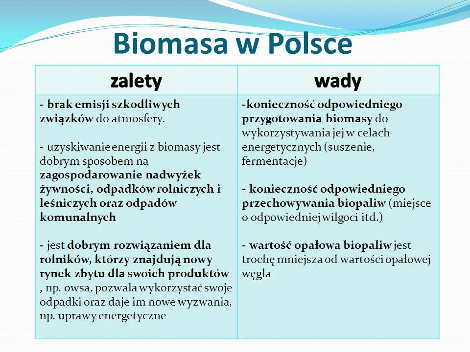 Biomasa w Polsce zalety wady