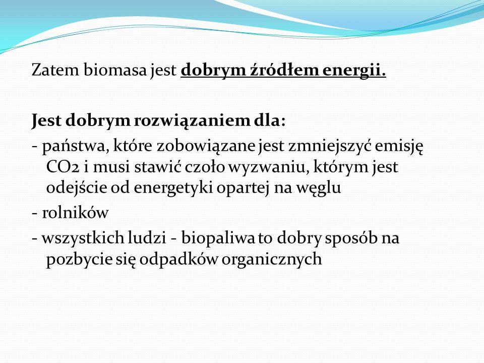 Zatem biomasa jest dobrym źródłem energii
