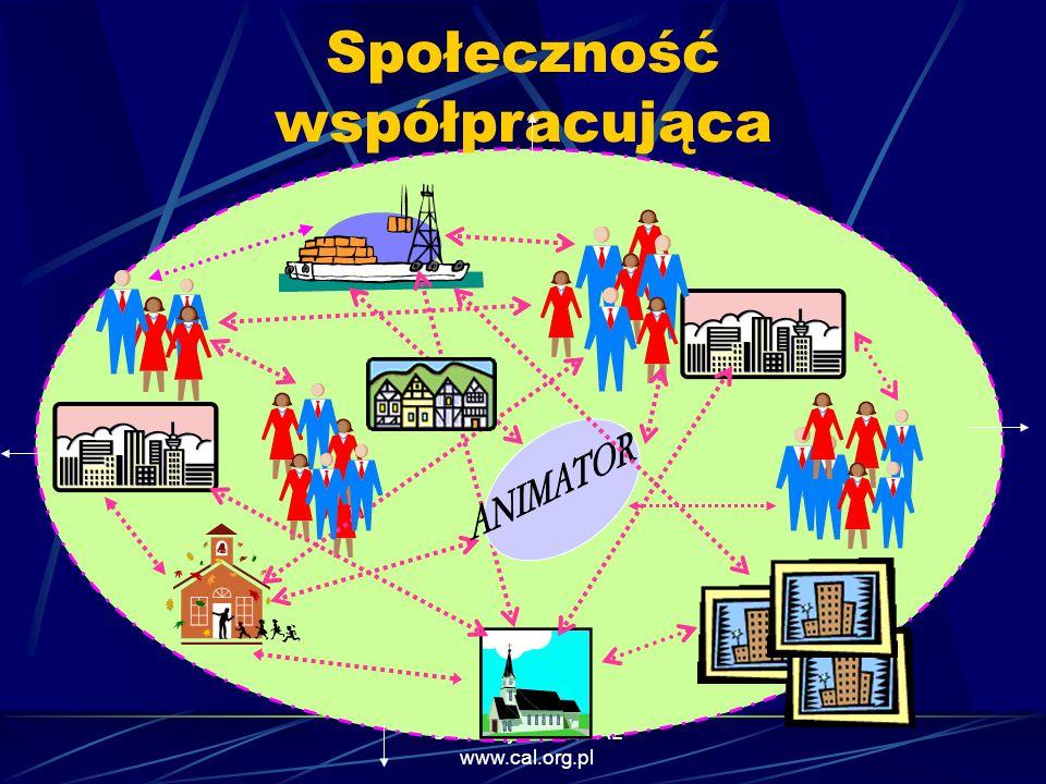 Społeczność współpracująca