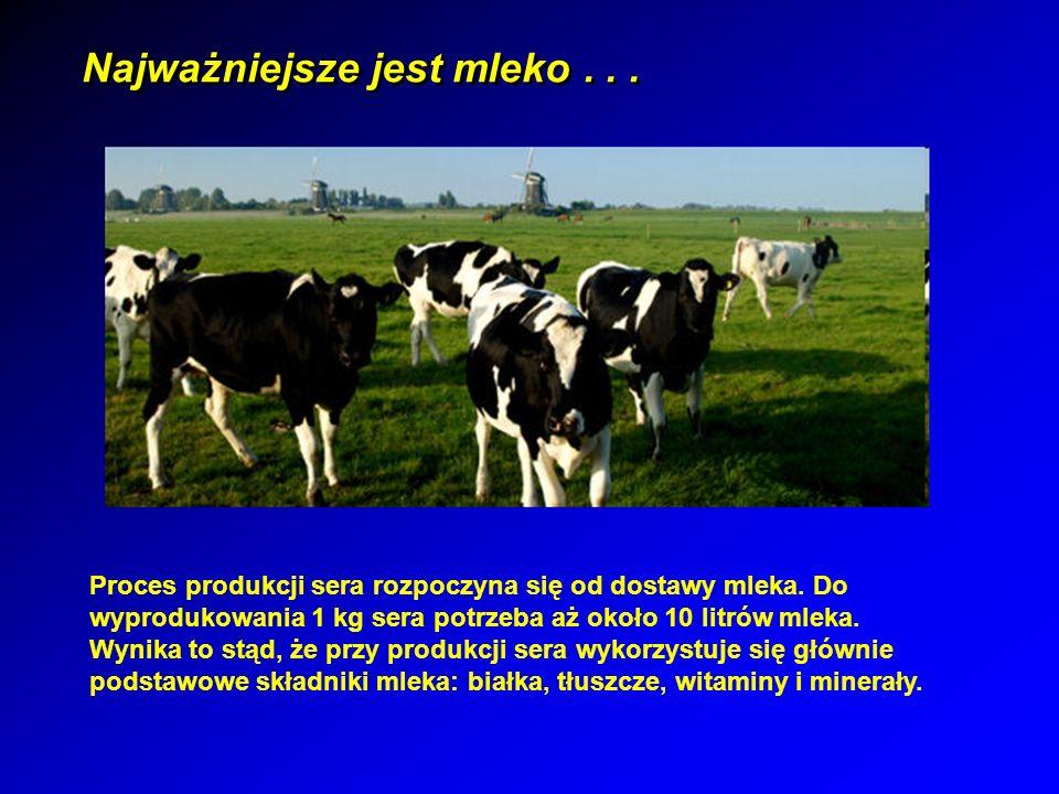 Najważniejsze jest mleko . . .