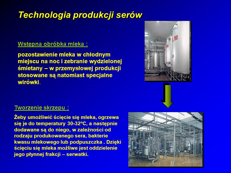 Technologia produkcji serów