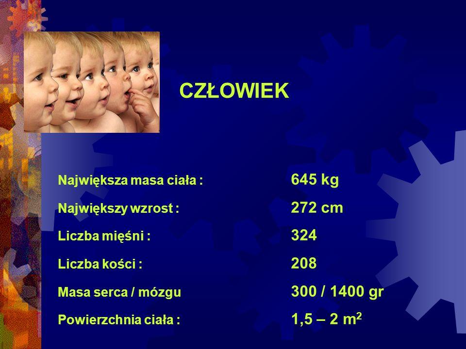 CZŁOWIEK Największa masa ciała : 645 kg Największy wzrost : 272 cm
