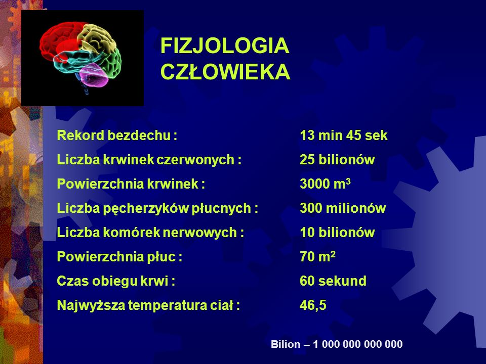 FIZJOLOGIA CZŁOWIEKA Rekord bezdechu : 13 min 45 sek