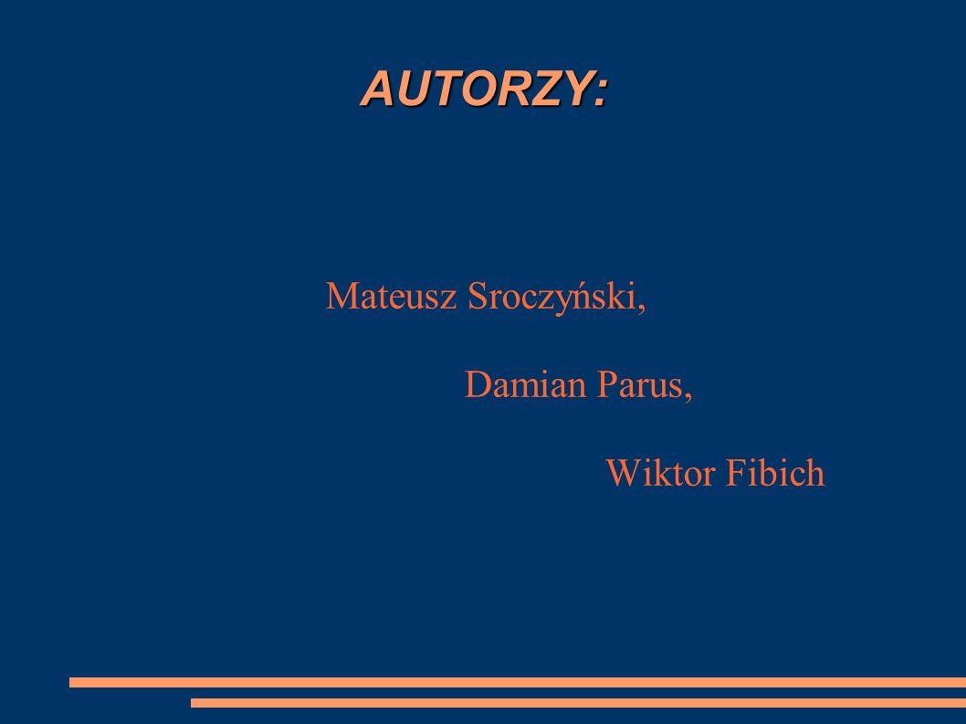 AUTORZY: Mateusz Sroczyński, Damian Parus, Wiktor Fibich