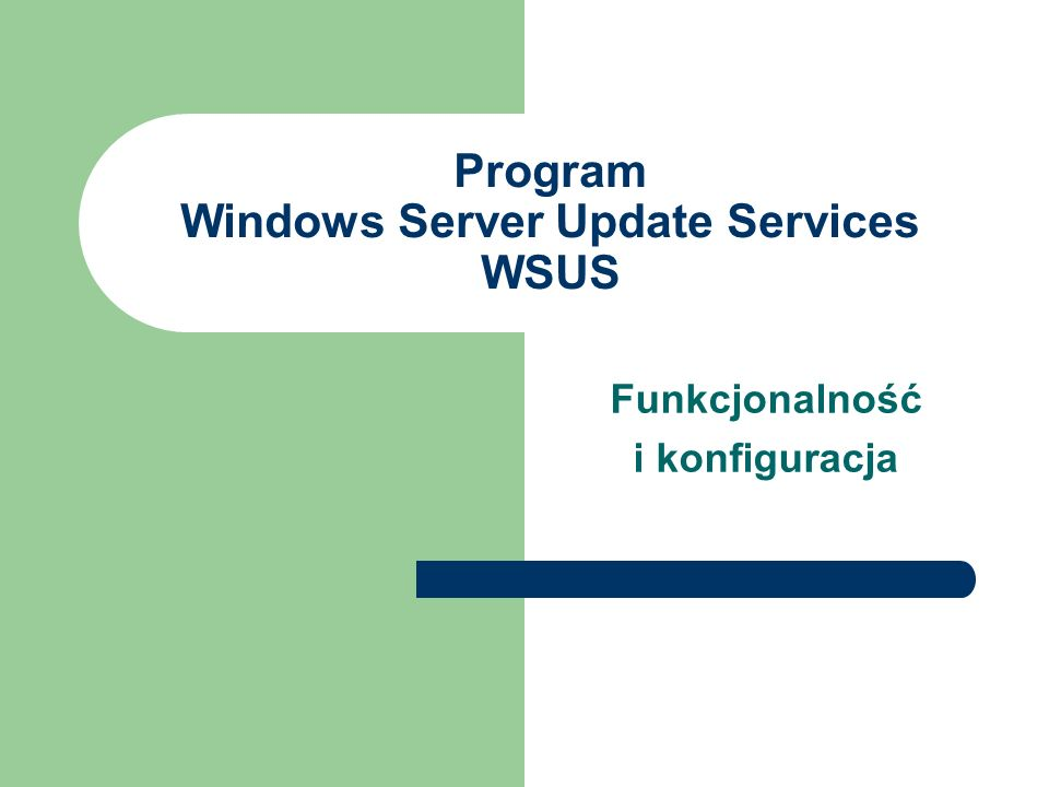 Program Windows Server Update Services WSUS