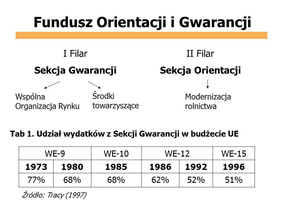 Fundusz Orientacji i Gwarancji