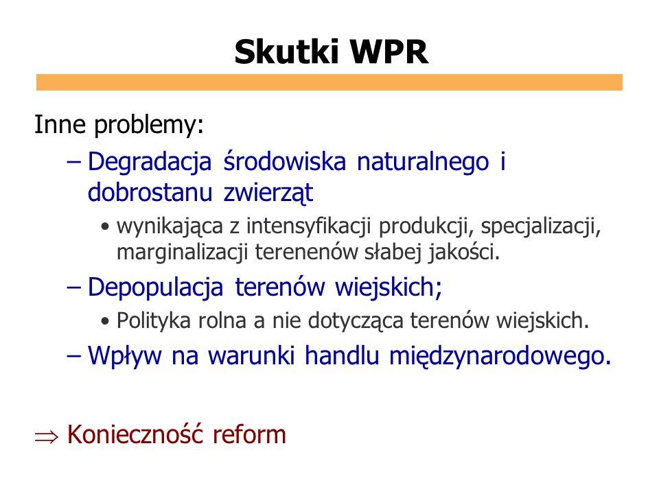 Skutki WPR Inne problemy: