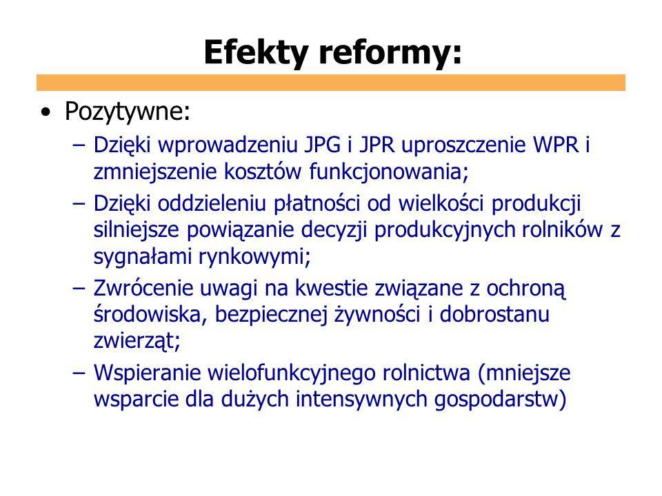 Efekty reformy: Pozytywne: