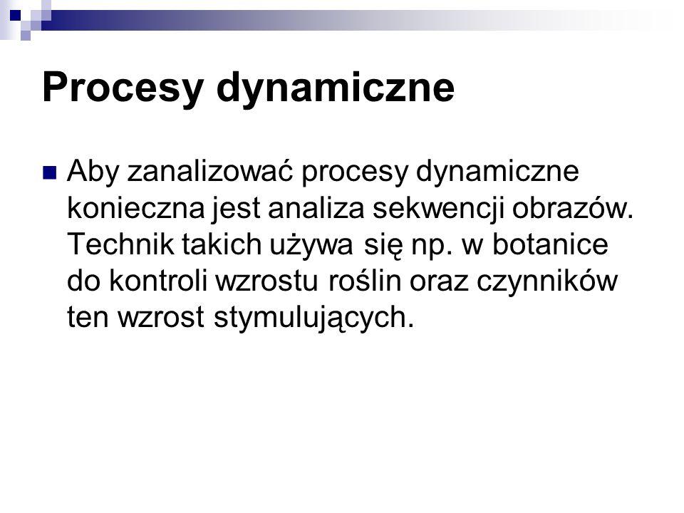 Procesy dynamiczne