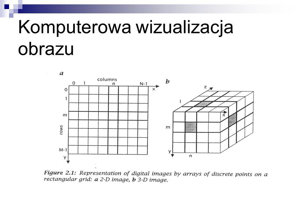 Komputerowa wizualizacja obrazu