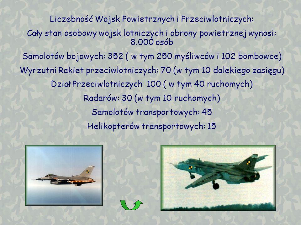 Liczebność Wojsk Powietrznych i Przeciwlotniczych: