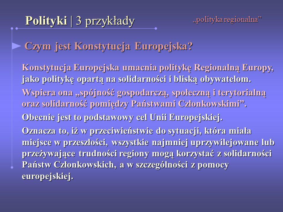 Polityki | 3 przykłady Czym jest Konstytucja Europejska