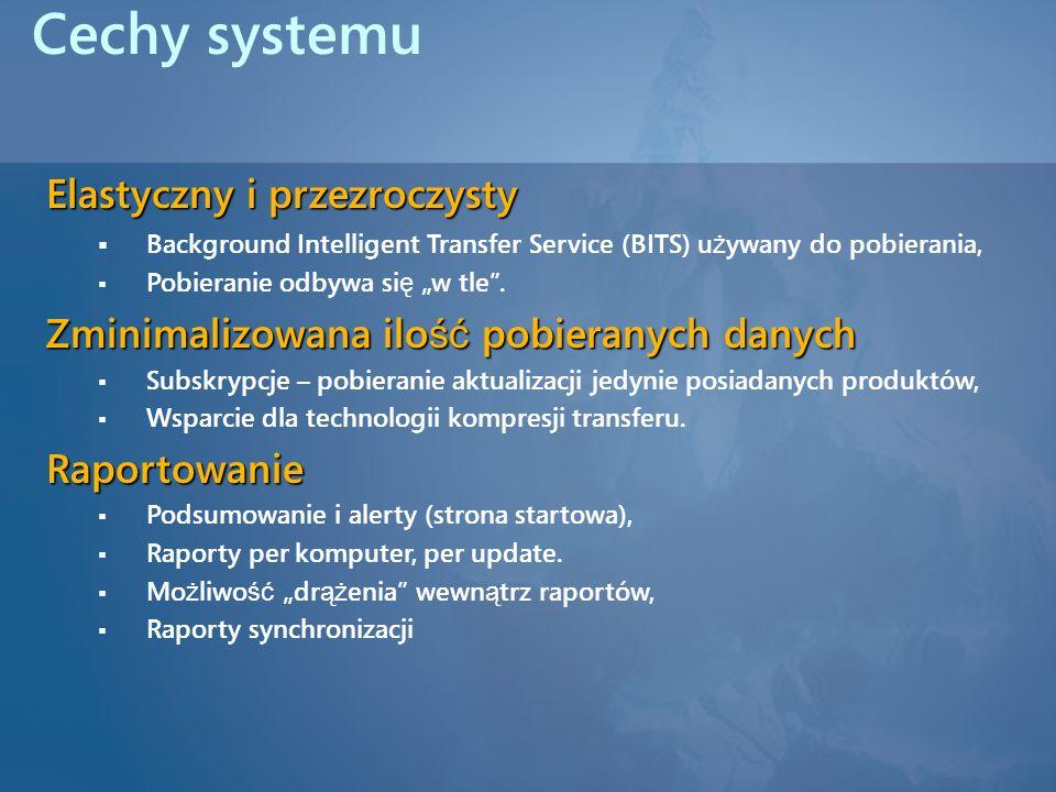 Cechy systemu Elastyczny i przezroczysty