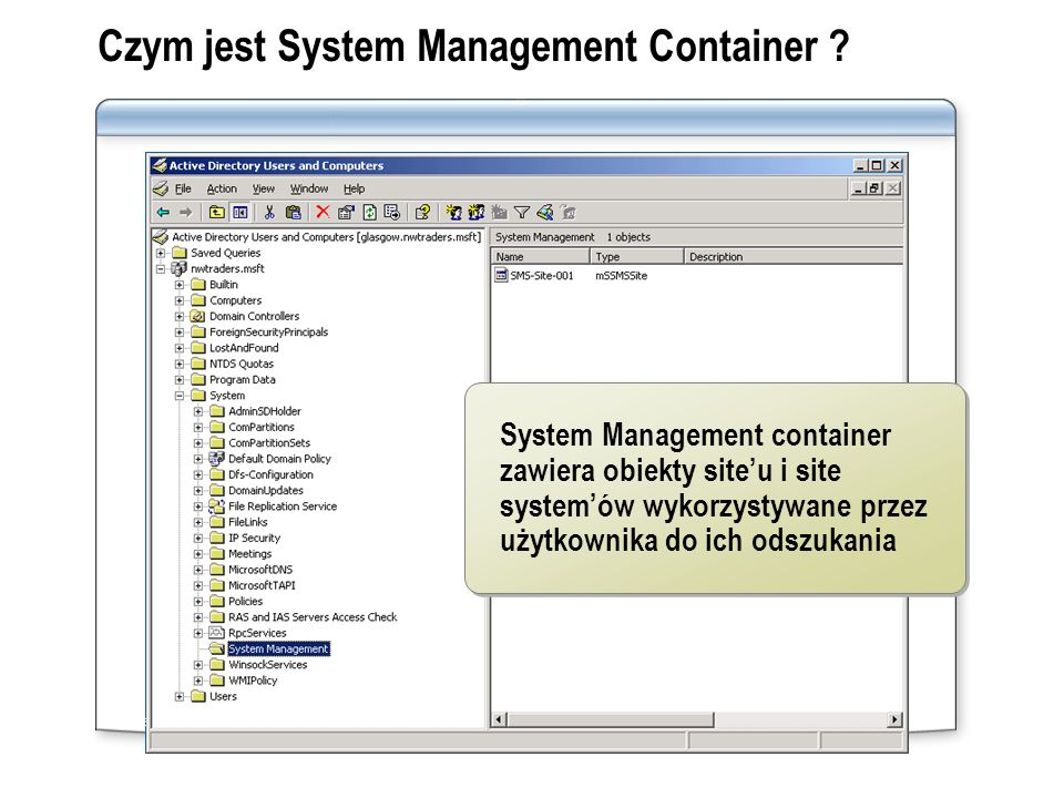 Czym jest System Management Container