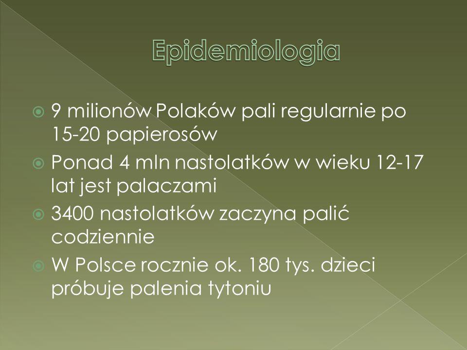Epidemiologia 9 milionów Polaków pali regularnie po 15-20 papierosów