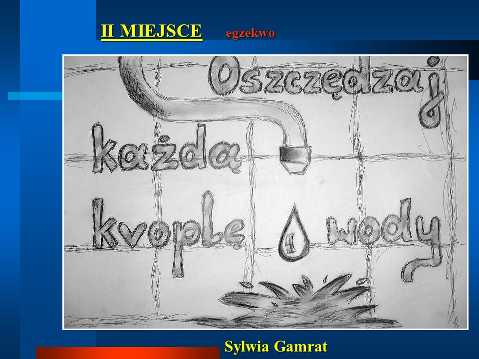II MIEJSCE egzekwo Sylwia Gamrat