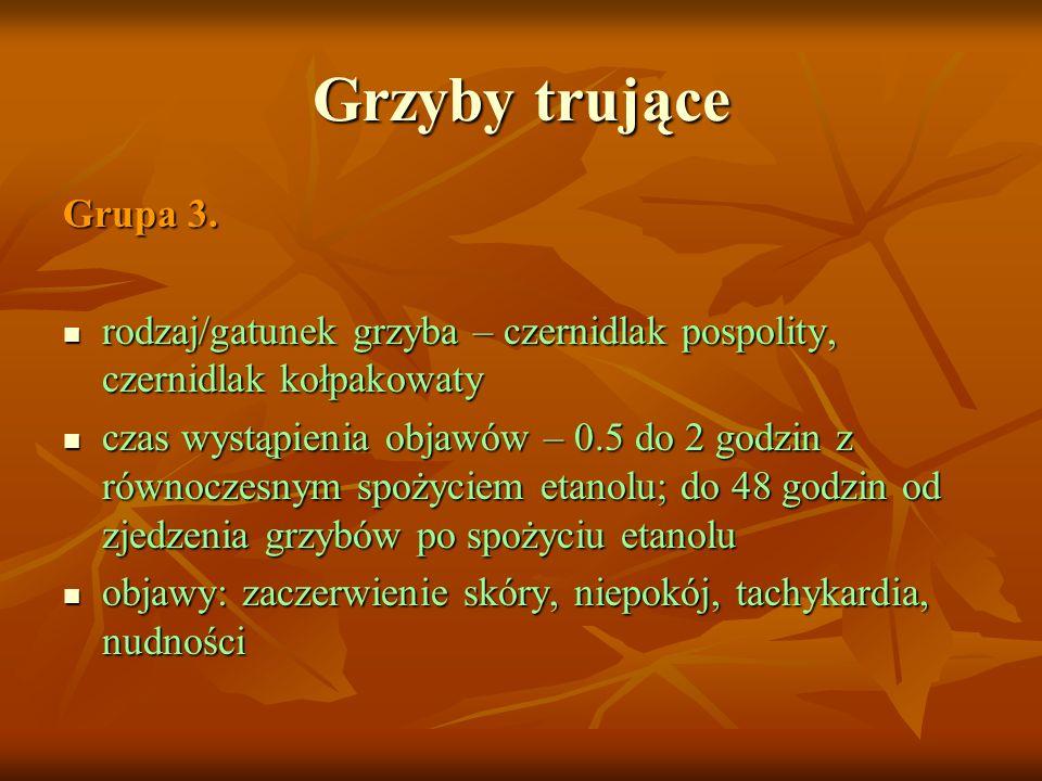 Grzyby trujące Grupa 3. rodzaj/gatunek grzyba – czernidlak pospolity, czernidlak kołpakowaty.