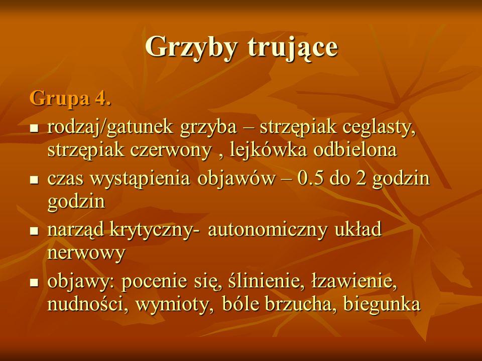 Grzyby trująceGrupa 4. rodzaj/gatunek grzyba – strzępiak ceglasty, strzępiak czerwony , lejkówka odbielona.