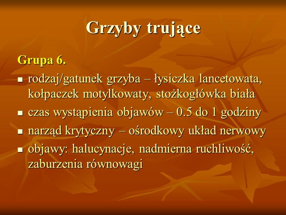 Grzyby trująceGrupa 6. rodzaj/gatunek grzyba – łysiczka lancetowata, kołpaczek motylkowaty, stożkogłówka biała.