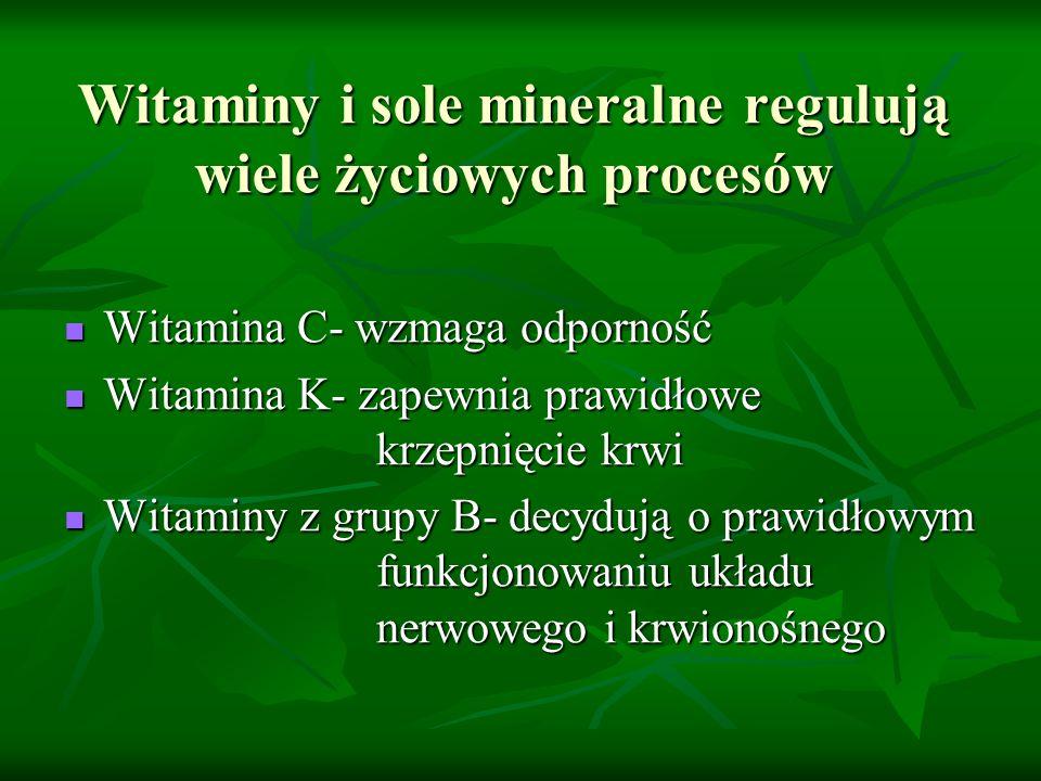 Witaminy i sole mineralne regulują wiele życiowych procesów