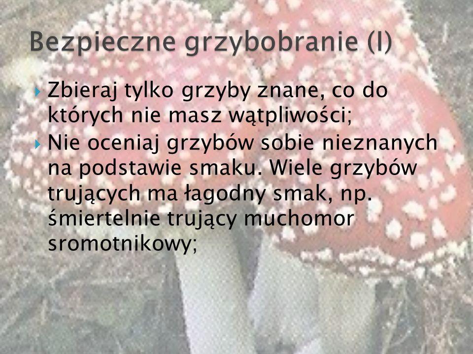 Bezpieczne grzybobranie (I)