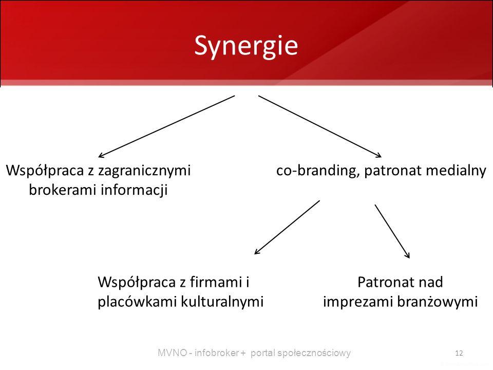 Synergie Współpraca z zagranicznymi brokerami informacji