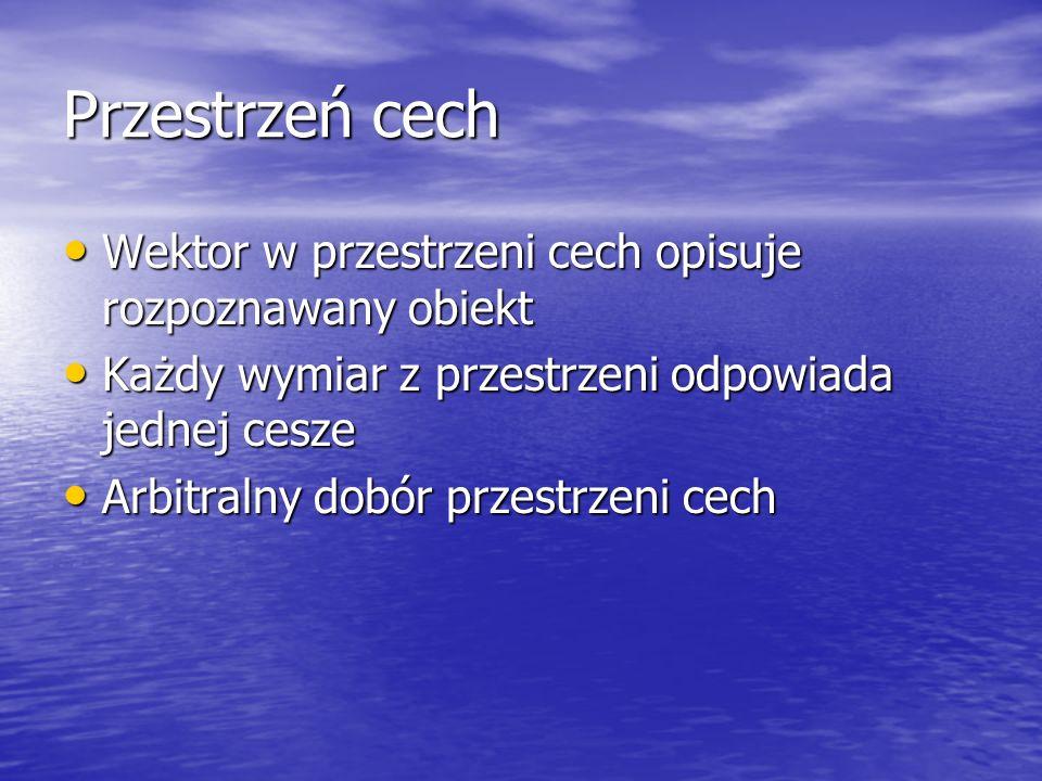Przestrzeń cech Wektor w przestrzeni cech opisuje rozpoznawany obiekt