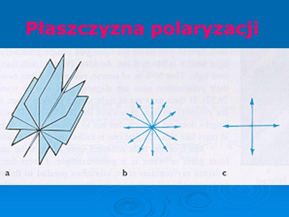 Płaszczyzna polaryzacji