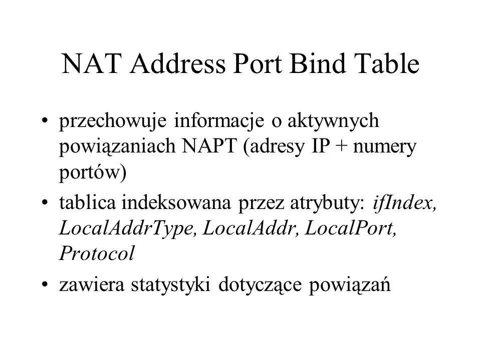 NAT Address Port Bind Table