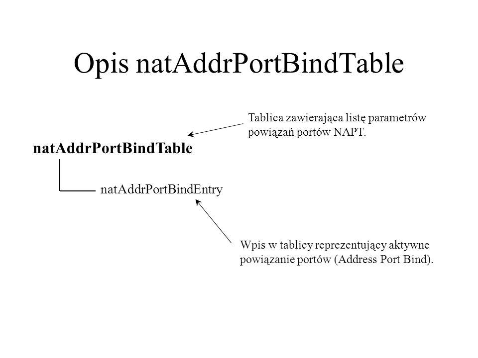 Opis natAddrPortBindTable