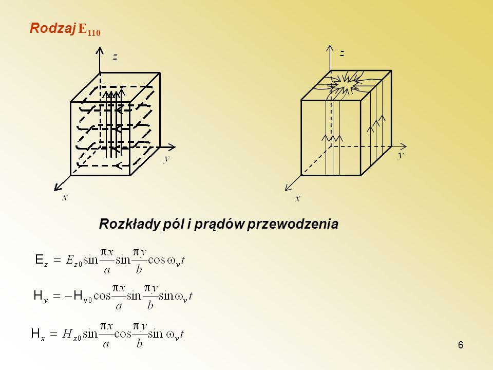 Rodzaj E110 Rozkłady pól i prądów przewodzenia