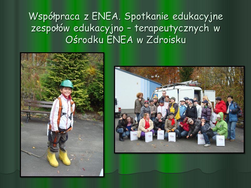 Współpraca z ENEA.