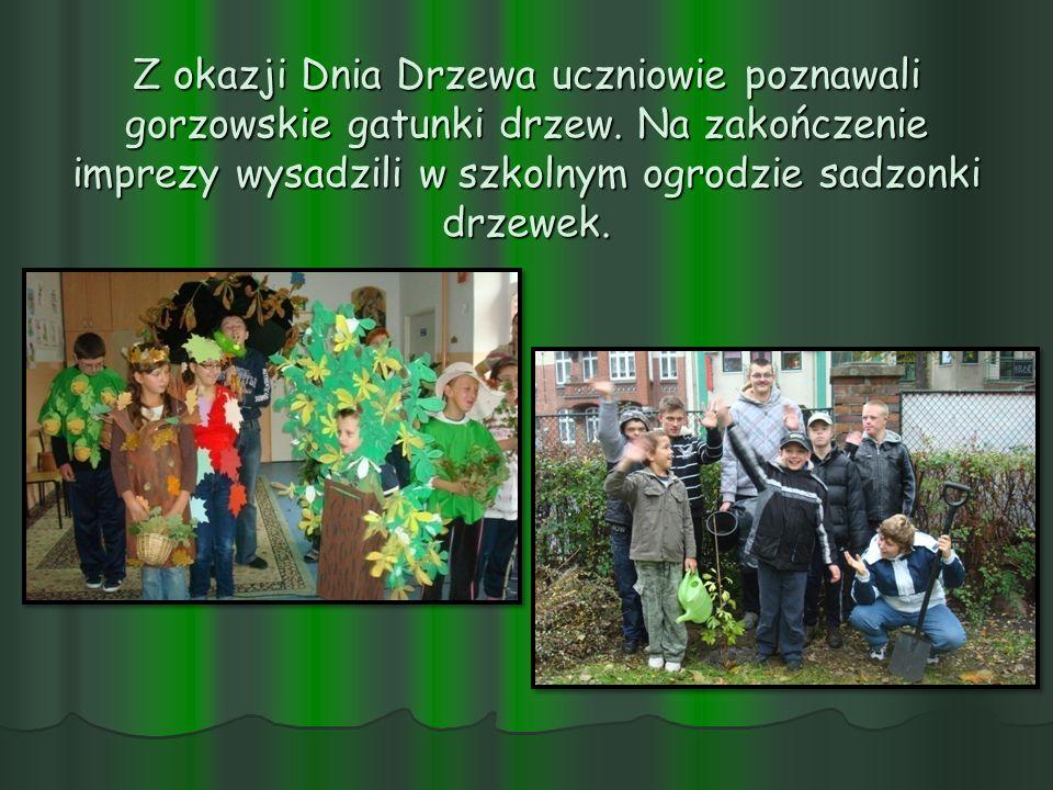 Z okazji Dnia Drzewa uczniowie poznawali gorzowskie gatunki drzew