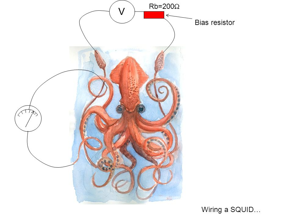 V Rb=200W Bias resistor Wiring a SQUID… 3