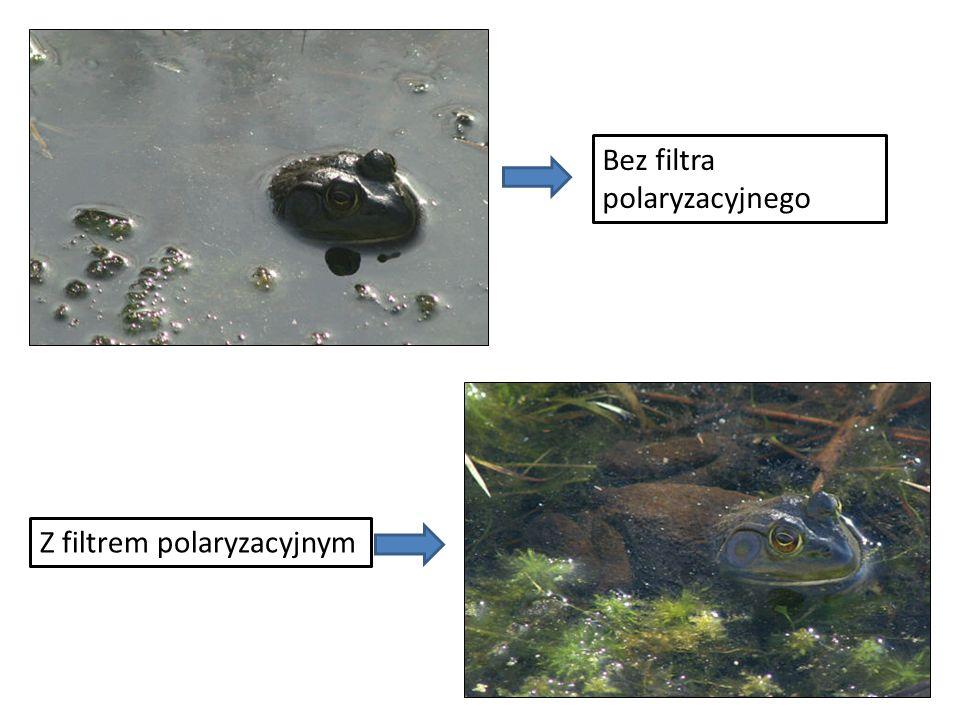 Bez filtra polaryzacyjnego