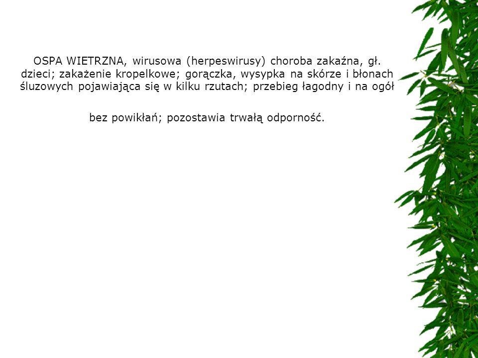 OSPA WIETRZNA, wirusowa (herpeswirusy) choroba zakaźna, gł