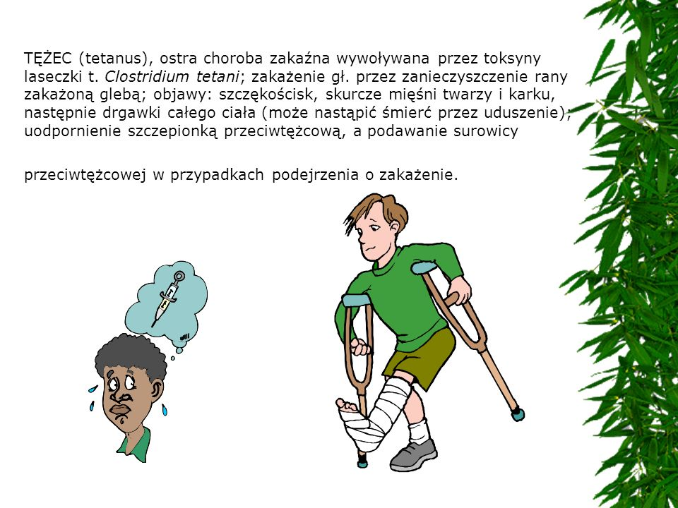 TĘŻEC (tetanus), ostra choroba zakaźna wywoływana przez toksyny laseczki t.